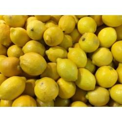 Citron Verna esp 1kg cal 2-4