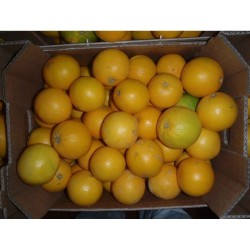 Cagette orange navel 12kg...