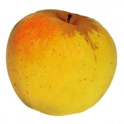 Cagette pomme opal 13kg cal...