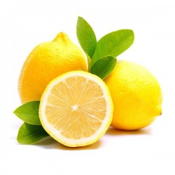 Citron cat II cal 3/4 ita...