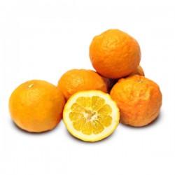 Orange amère 3kg ita...