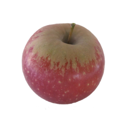 Cagette pomme ariane 13kg...